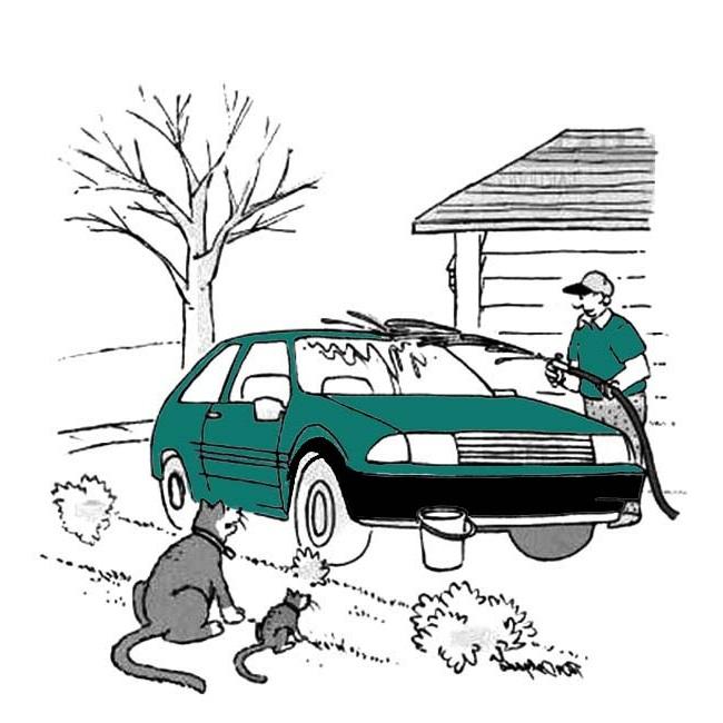 شستشوی خودرو با واترجت صنعتی